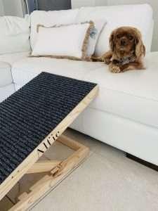 Height Adjustable Dog Ramp Dachshund Ramp Australia