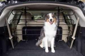 PetSafe HappyRide Metal Safety Barrier For Car - The Dog Ramp Co. Australia